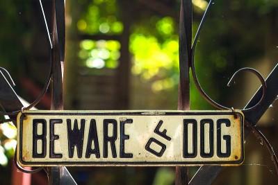 beware-of-dog-wikimedia-share-alike-license-e1382718846259