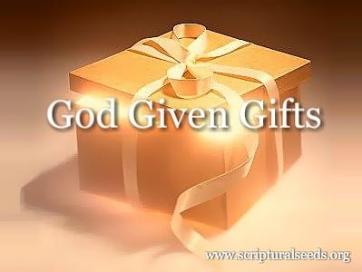 Start A New Gift